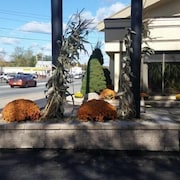 Top 10 hotels in attleboro ma 75 cheap hotels on expedia for Attleboro motor inn attleboro ma 02703