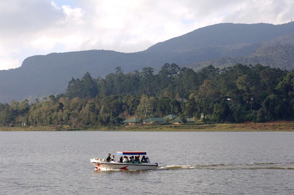 划船翻译成g调的谱子