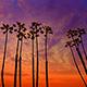 Huntington Beach and the Orange County