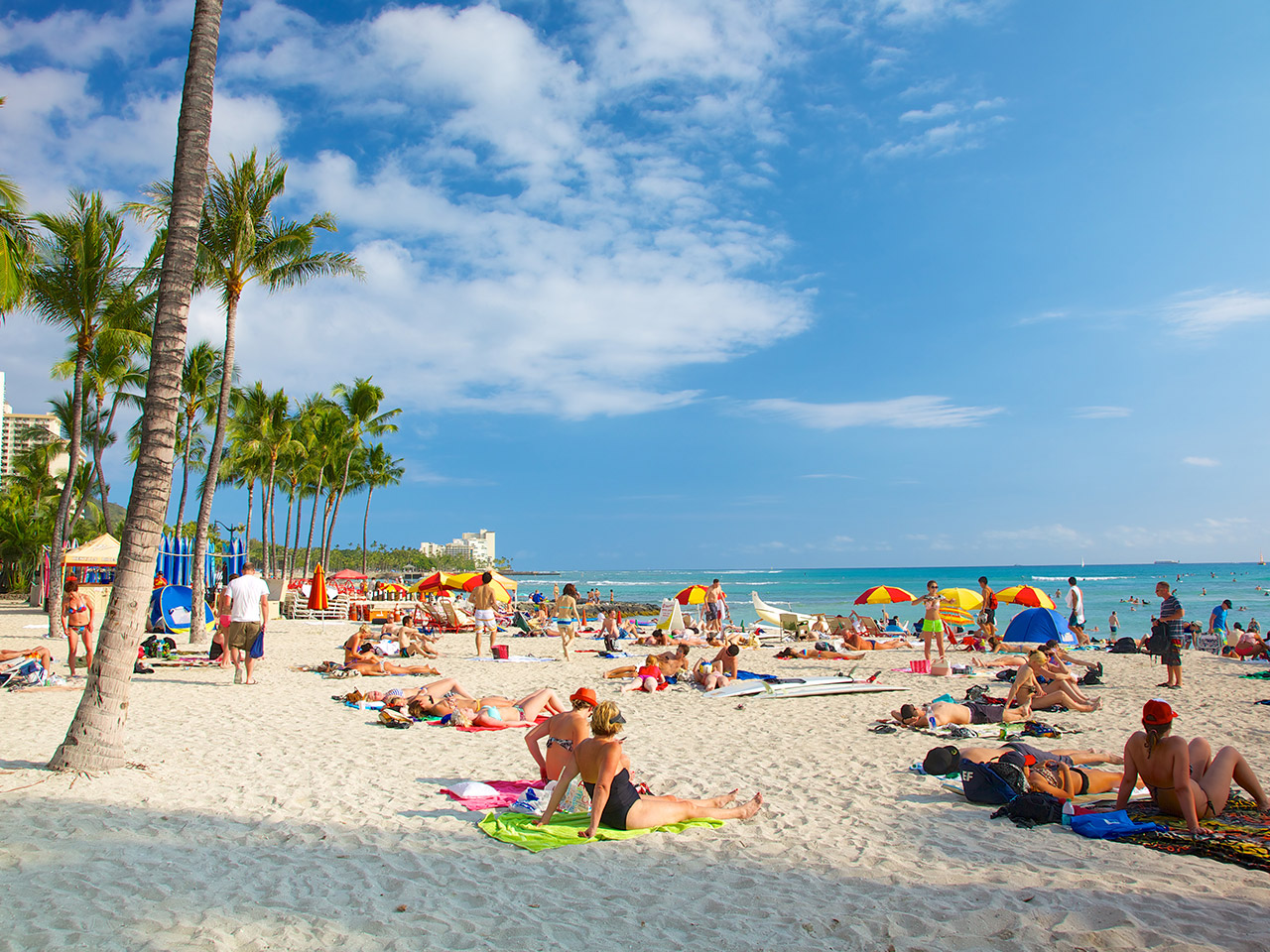 Hawaii's celebrity hotel hangouts