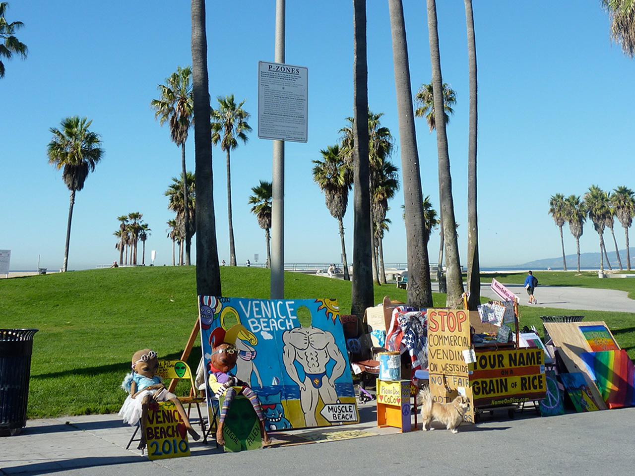 Life's a Show at Venice Beach