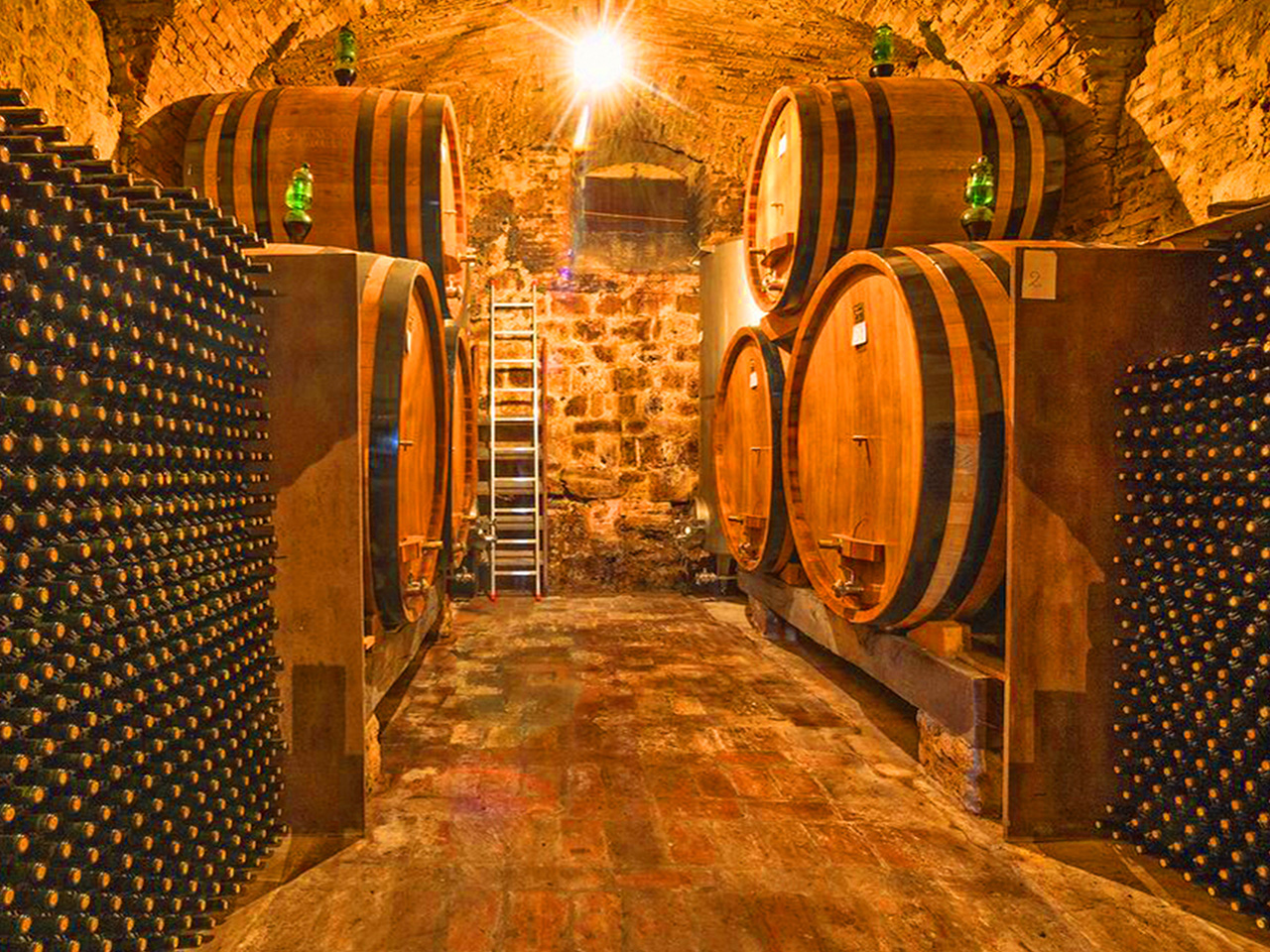 Wine cellars - Foodies Guide to Paris