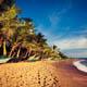 Listopedia: Bali's best swaps