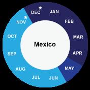 Mexico cruise info
