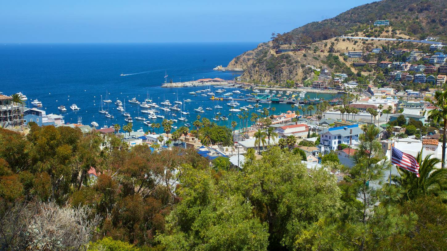 Top Catalina Island Hotels In Avalon Hotel Deals On Expedia - Catalina island on us map