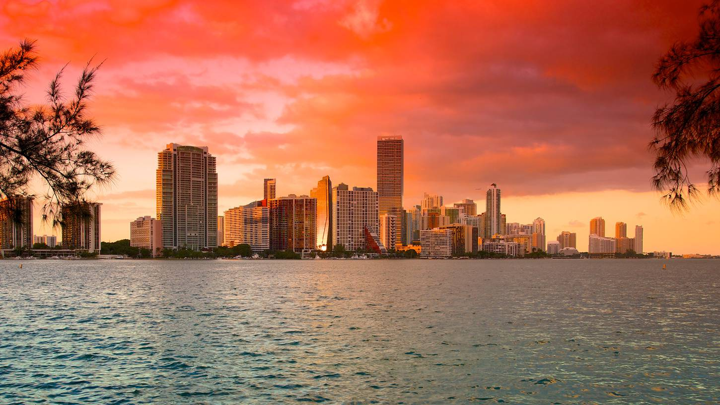Cheap Flights to Miami – $98.00: Get Tickets Now | Expedia Miami