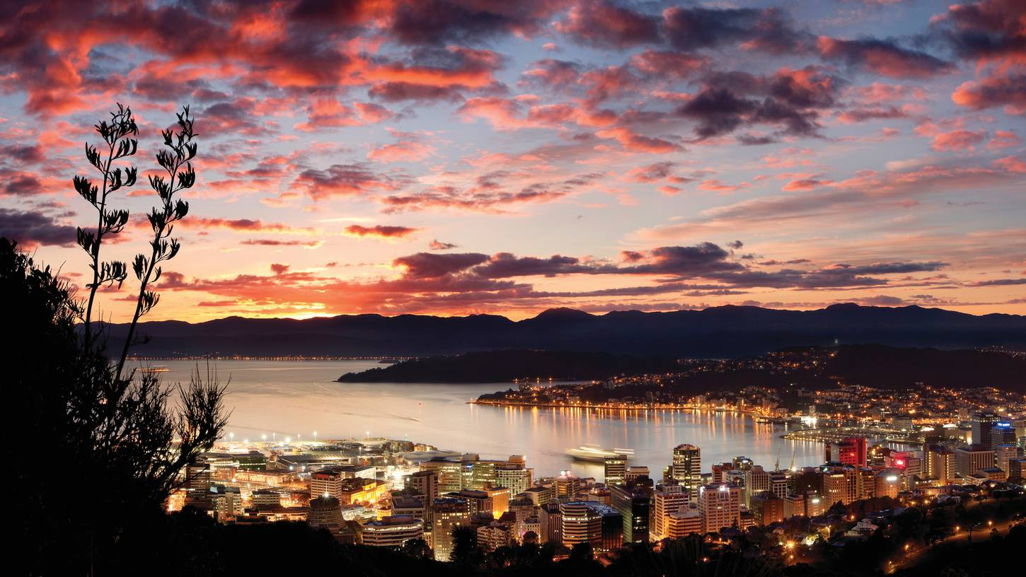 cheap flights to wellington new zealand 831 50 in 2017