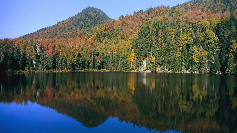 White Mountains Hotels Top 10 Hôtels à partir de 106 C