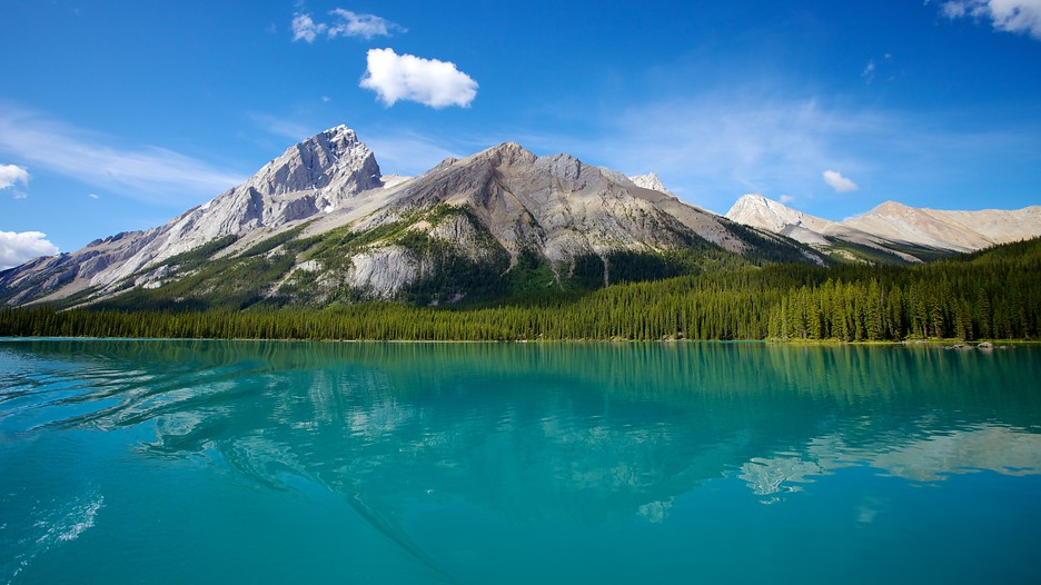 maligne lake in jasper alberta expedia ca