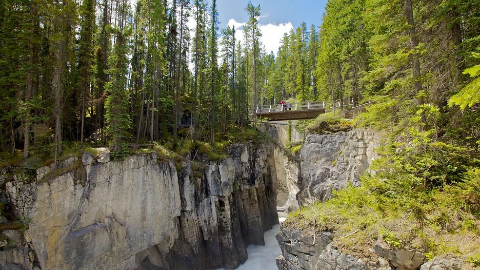 Sunwapta Falls In Jasper Alberta Expedia Ca