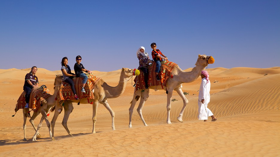 Dubai Vacation Packages  Book Cheap Vacations  Travel