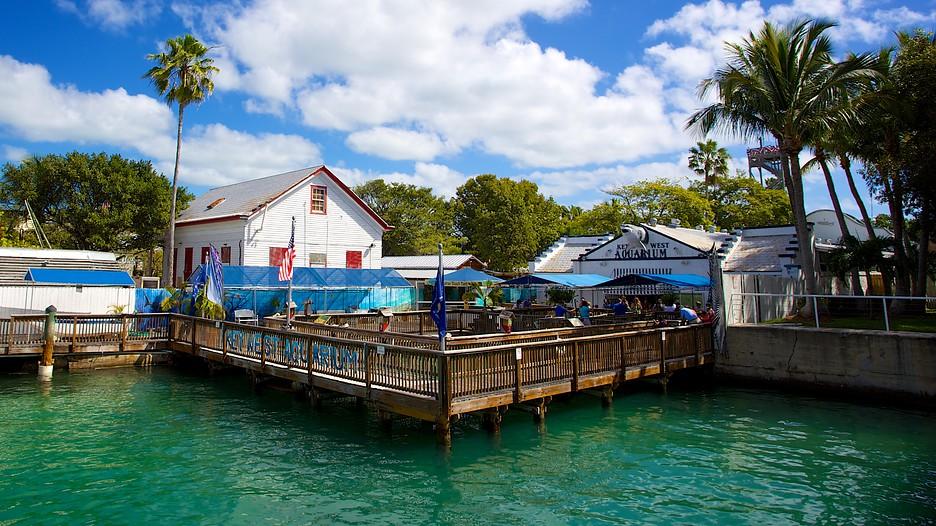 Aquarium In Key West