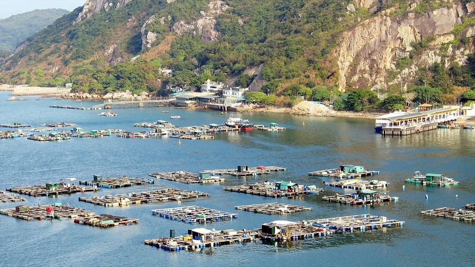 Cities In Hong Kong Island