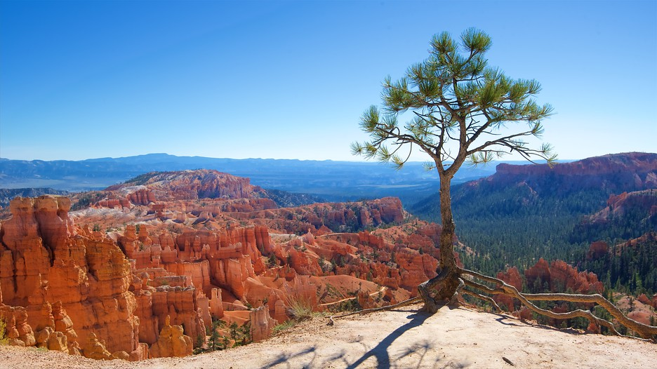 Bryce Canyon National Park Vacations 2017 Package Amp Save