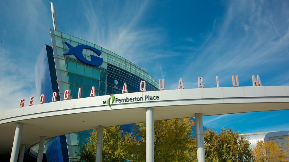 Acuario de georgia informaci n de acuario de georgia en for Georgia fotos