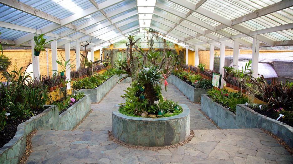 Bogota Botanical Garden In Bogota Expedia