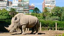 Zoo de Buenos Aires - Buenos Aires et ses environs