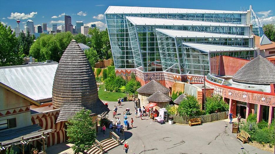 Calgary Zoo In Calgary Alberta Expedia