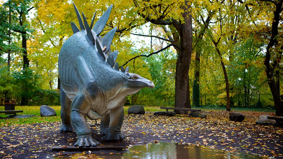 Cleveland museum of natural history in cleveland ohio Dinosaur museum ohio