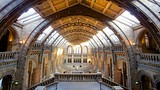 London Natural History Museum - London - Tourism Media