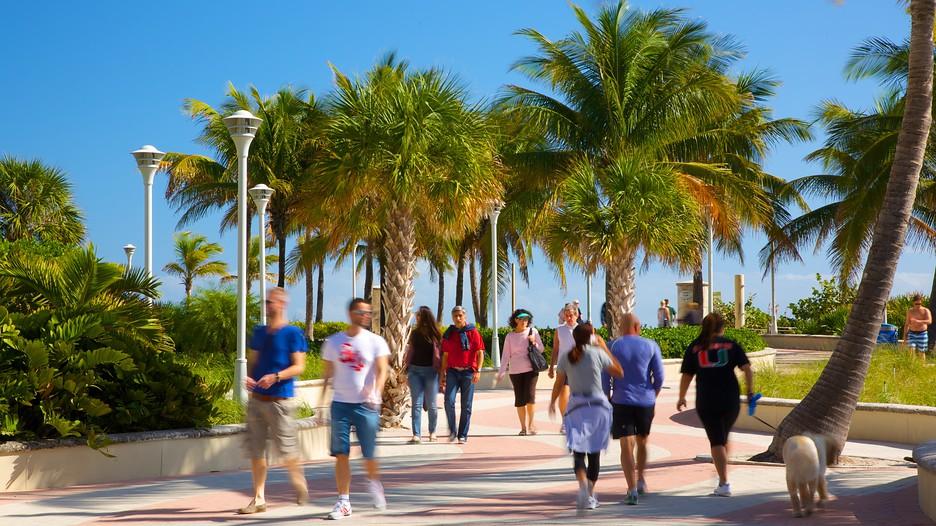 Miami Beach Volo E Hotel