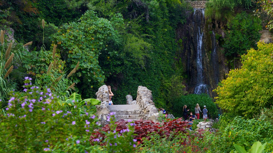 Japanese Tea Gardens in San Antonio Texas Expedia