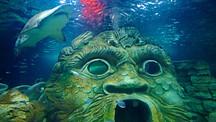 シドニー水族館 - シドニー