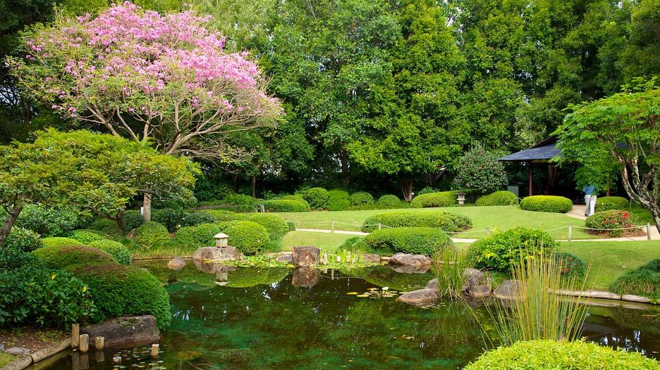 Brisbane Botanic Gardens In Brisbane Queensland Expedia