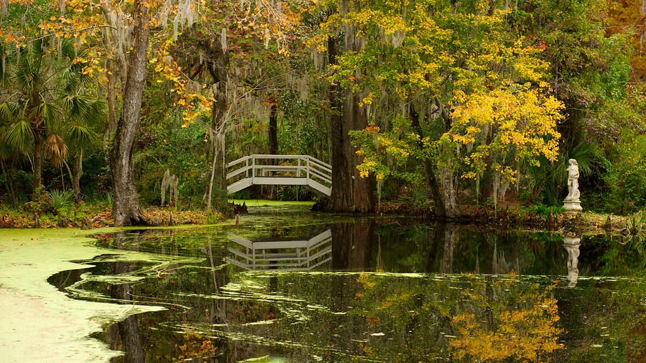Charleston Vacations 2017 Package Amp Save Up To 603 Expedia
