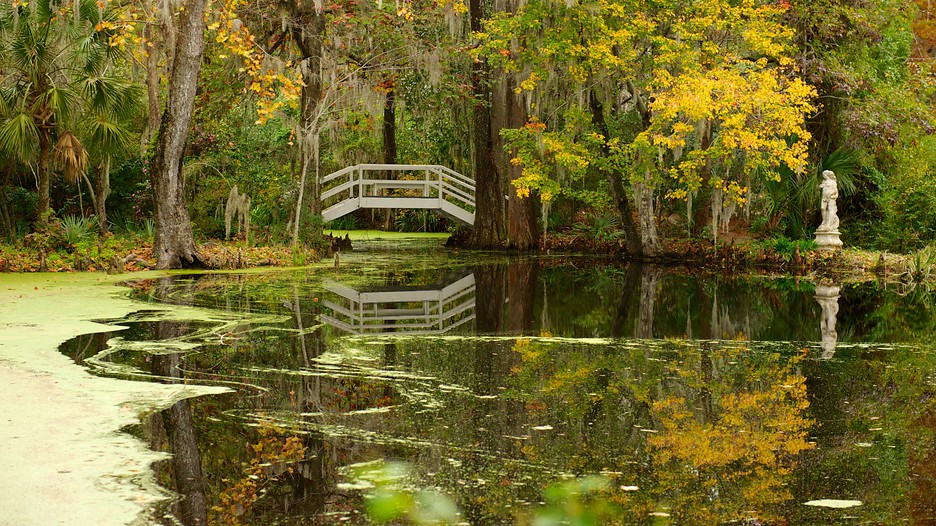 charleston tour packages with Magnolia Plantation And Gardens Charleston D6082613 on Charleston d179997 furthermore 2 together with Villa Del Palmar Loreto furthermore Hotel Review G58066 D268862 Reviews Mountain Lake Lodge Pembroke Virginia furthermore Attractions.