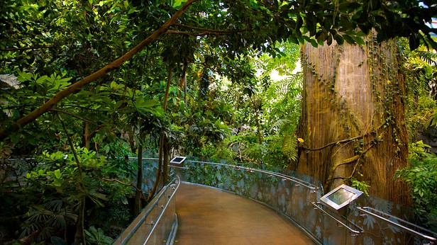 Montreal Biodome In Montreal Quebec Expedia Ca