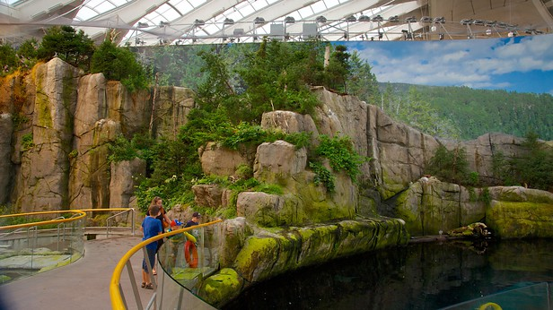 Car Rental Montreal >> Montreal Biodome in Montreal, Quebec | Expedia.ca