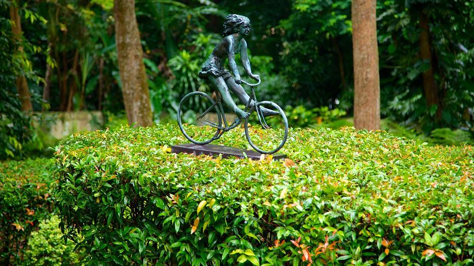 シンガポール植物園の画像 p1_33