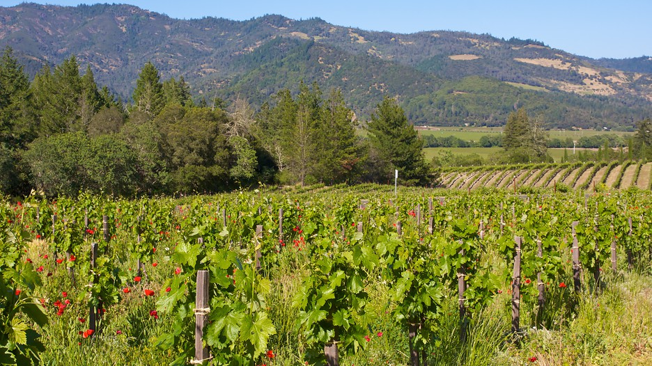 The Best Napa Valley Vacation Packages 2017 Save Up To