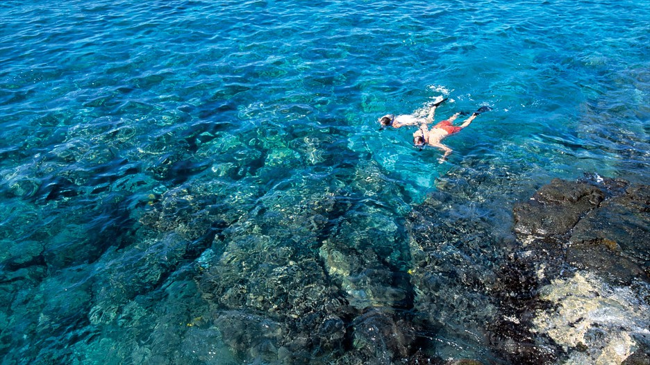 Cheap Big Island Vacation Packages