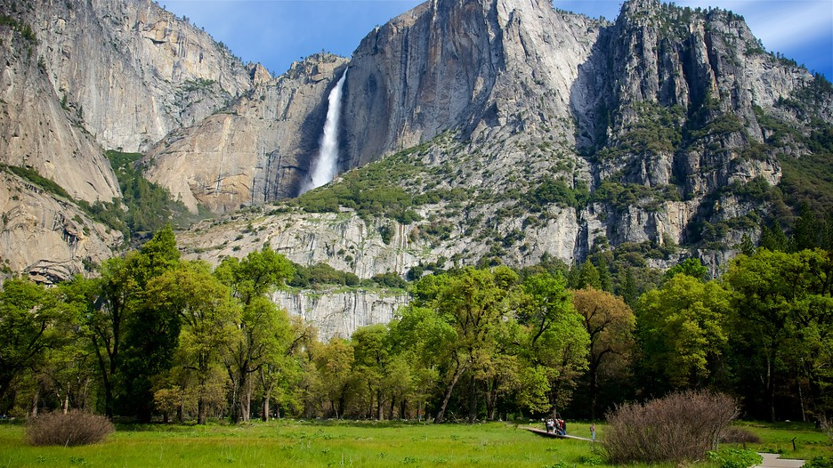 an overview of the tourist attractions at yosemite national park Find things to do in yosemite national park – discover tourist attractions, schedule tours, plan fun vacation sightseeing activities and book them all on expedia.