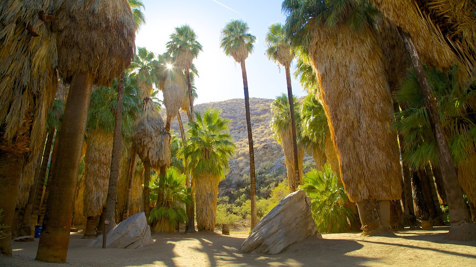 Palm Springs Vacations 2017 Package Amp Save Up To 603