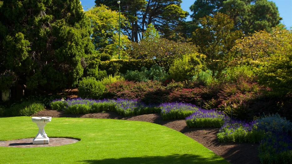 gardening hints guidelines