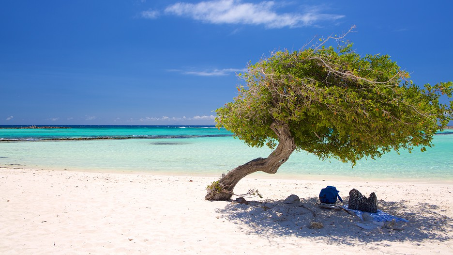 Aruba Vacations: Package amp; Save up to $603 in 2017