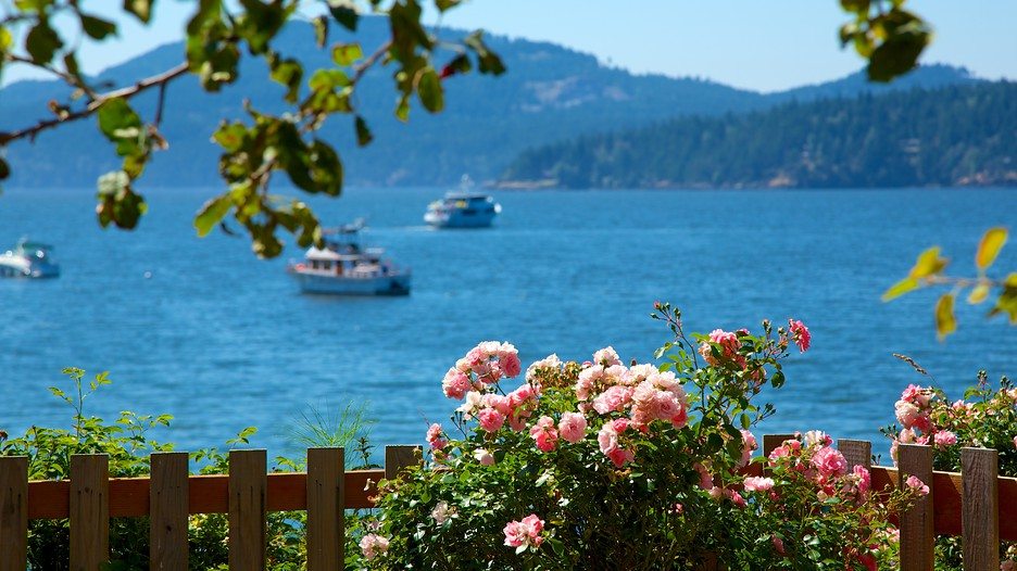 how to get to orcas island from salt spring