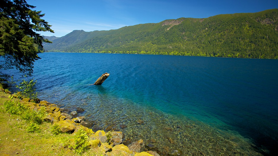 Olympic National Park Vacations 2017 Package Amp Save Up To