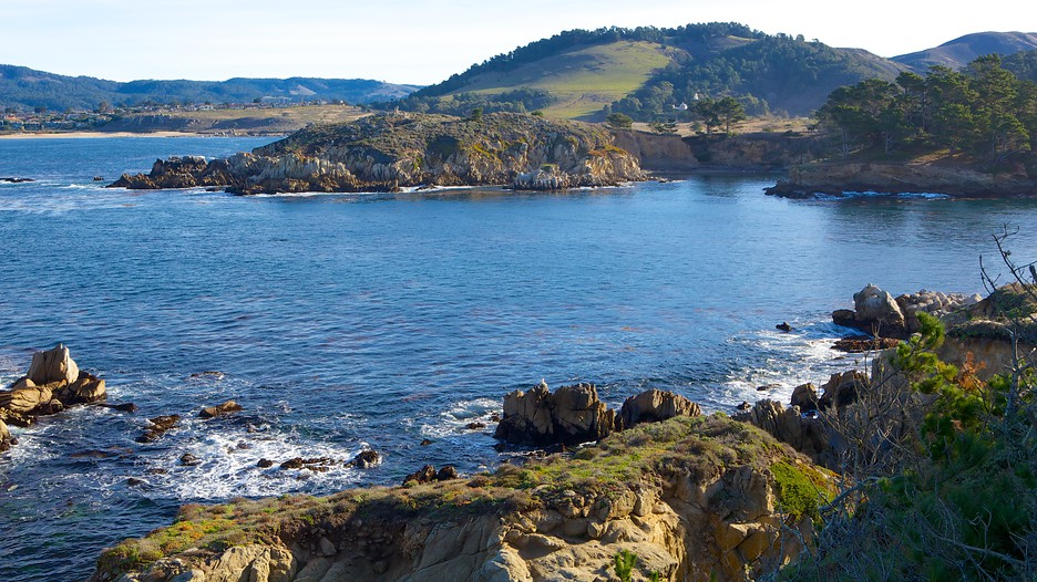 Point Lobos State Reserve In Carmel California