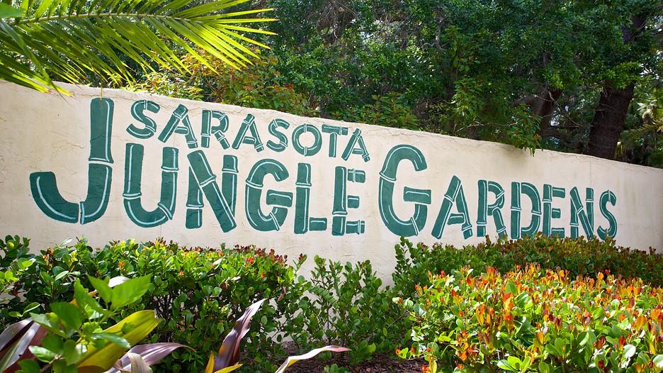 Sarasota Jungle Gardens In Sarasota Florida Expedia Ca