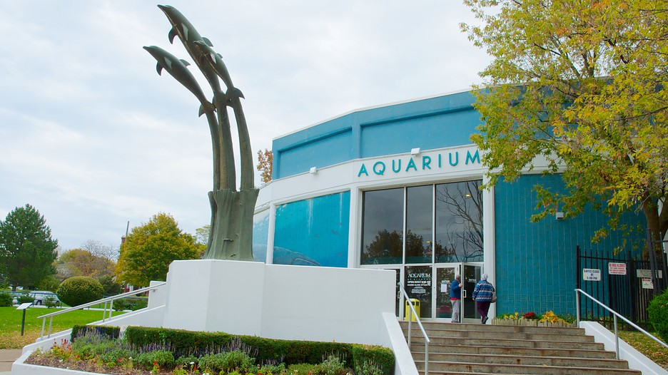 Aquarium Of Niagara Les Activit S Niagara Falls