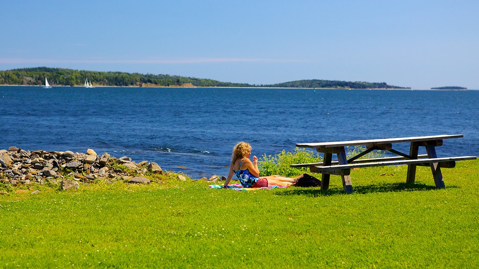 Point Pleasant Park In Halifax Nova Scotia Expedia Ca