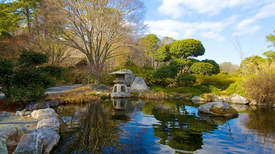 norfolk botanical garden in norfolk virginia expedia