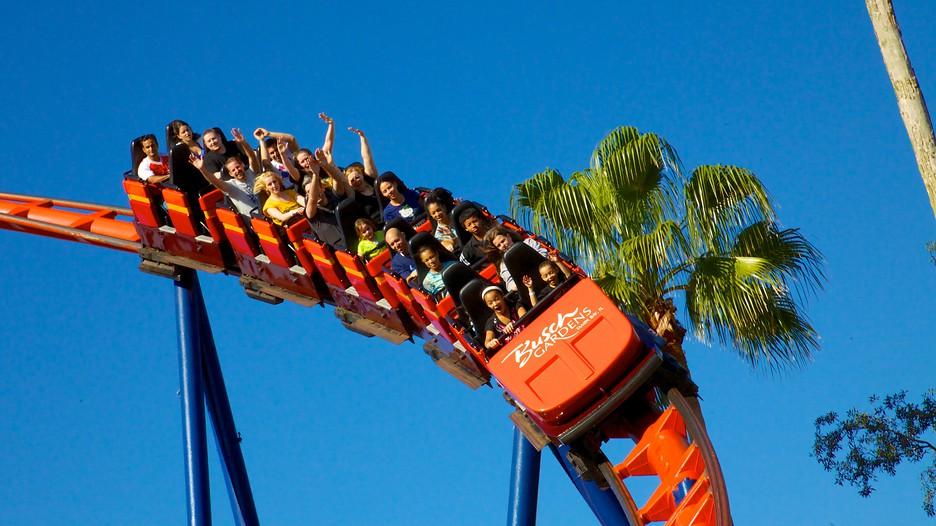 Busch Gardens In Tampa Florida