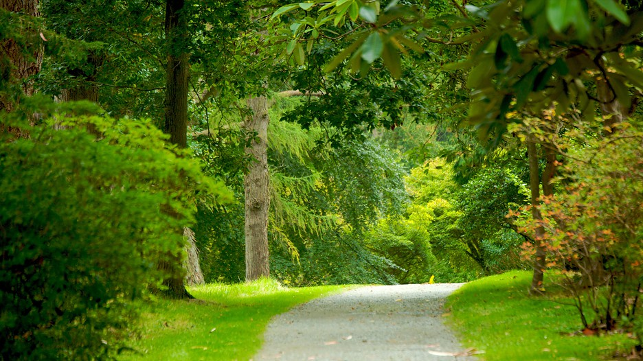Mount Stewart House And Gardens In Newtownards Northern Ireland Expedia Ca