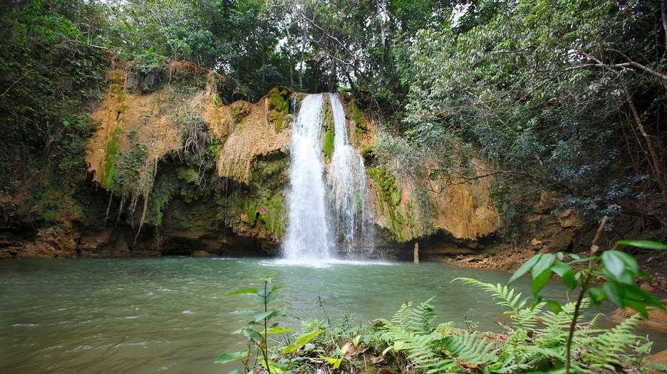 Los Haitises National Park in Samana, | Expedia.ca