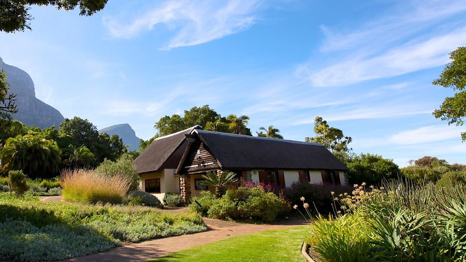 Kirstenbosch national botanical gardens in kapstadt for Jardin kirstenbosch